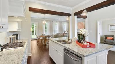 New Home in Darrow, LA